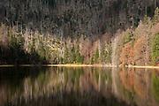 Rachelsee, Rachel, Nationalpark Bayerischer Wald, Bayern, Deutschland | Lake Rachel, national park Bavarian Forest, Bavaria, Germany