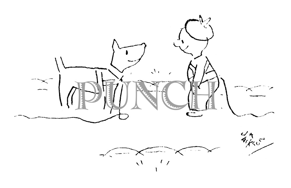(Dog with a leash meets a toddler with reins)