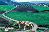 Syrie - Nord d'Alep - Pont Romain - Cyrrhus