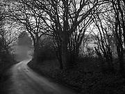 Sandhurst Lane, Bexhill on Sea. East Sussex. 31 December 2016