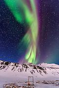 Northern lights at Hornstrandir
