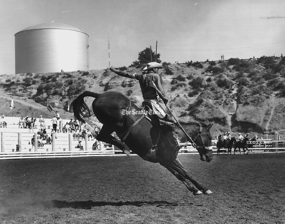 A wrangler from O.K. Falls, B.C., stretched every ounce to stay on the saddle bronc, No Dice, in the opening moments of the Ellensburg Rodeo. At the completion of his ten-second ride, he was thrown to the ground and his mount flipped over on him. He escaped with bruises. (Johnny Closs / The Seattle Times, 1963)