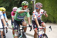 Peter Sagan (SVK - Bora - Hansgrohe) Green Jersey, Julian Alaphilippe (FRA - QuickStep - Floors) Polka dots jersey during the 105th Tour de France 2018, Stage 21, Houilles - Paris Champs-Elysees (115 km) on July 29th, 2018 - Photo Luca Bettini / BettiniPhoto / ProSportsImages / DPPI