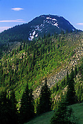 Mount Robinsion in summer. Mount Robinson Roadless Area, Purcell Mountains, northwest Montana