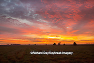 63893-02911 Sunrise at Prairie Ridge State Natural Area, Marion Co, IL