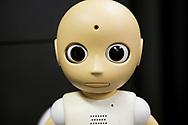 Roboten CommU (Communication Unity)<br /> ATR Hiroshi Ishiguro Laboratories<br /> <br /> The Robot CommU (Communication Unity)<br /> ATR Hiroshi Ishiguro Laboratories<br /> <br /> Fotograf: Christina Sjögren<br /> Copyright 2018, All Rights Reserved
