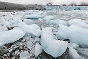 Calved icebergs fill the forebay of Hansbreen, Hornsund, Svalbard.