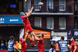 Scarlets' Tadhg Beirne claims the lineout - Mandatory by-line: Craig Thomas/Replay images - 31/12/2017 - RUGBY - Cardiff Arms Park - Cardiff , Wales - Blues v Scarlets - Guinness Pro 14