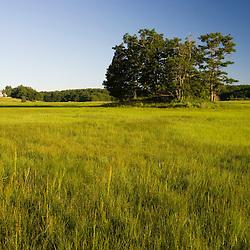 Early morning on a salt marsh in Essex, Massachusetts.