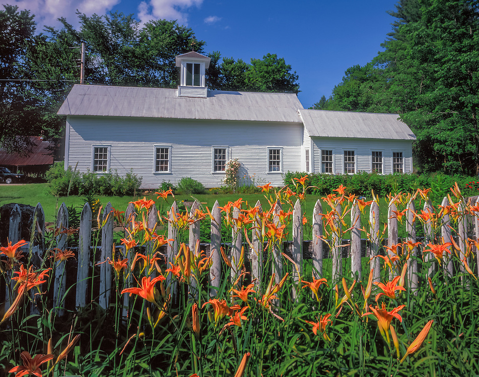 White barn with picket fence & daylilies, Newfane, VT