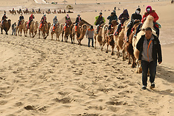 May 3, 2017  Tourists ride camels at Mingsha Sand Mountain, or the Singing Sand Dunes, in Dunhuang, northwest China's Gansu Province. Mingsha Sand Mountain scenery zone in Dunhuang has attracted numerous tourists recently.  yxb) (Credit Image: © Fan Peishen/Xinhua via ZUMA Wire)