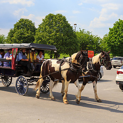 Bird-in-Hand, PA - June 1, 2016: <br /> Tourists return in a horse-drawn wagon after a ride on rural roads in Lancaster County, PA.