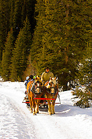 Sleigh ride along the edge of Lake Louise, Banff National Park, Alberta, Canada
