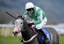 Sparkling Ice ridden by Matt Griffiths during the Bathwick Tyres Taunton Fillies' Juvenile Hurdle (Class 4) (4YO only) - Photo mandatory by-line: Harry Trump/JMP - Mobile: 07966 386802 - 09/03/15 - SPORT - Equestrian - Horse Racing - Taunton Racing - Taunton Racecourse, Somerset, England.