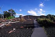 Desolation Trail, Kilauea Volcano, Hawaii Volcanoes National Park, Island of Hawaii, Hawaii, USA<br />