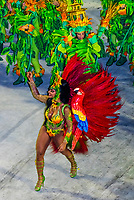 Samba dancer in the Carnaval parade of Unidos da Tijuca samba school in the Sambadrome, Rio de Janeiro, Brazil.