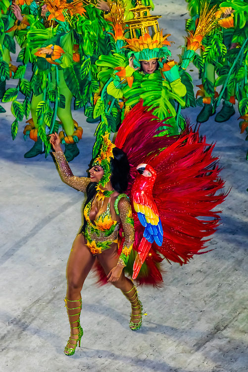 Samba dancer in the Carnaval parade of Unidos da Tijuca samba school in the Sambadrome, Rio de Janeiro, Brazil.