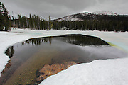 Sylvan Lake, up on the East Entrance road, between Fishing Bridge and Cody, was still almost completely frozen at Midsummer. It is on a high pass of about 8,500 ft (2,600 m) above sea level
