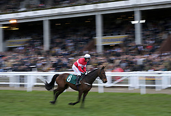 Cut The Mustard ridden by Noel Fehily go to post prior to the start of the Trull House Stud Mares' Novices' Hurdle during St Patrick's Thursday of the 2018 Cheltenham Festival at Cheltenham Racecourse. PRESS ASSOCIATION Photo. Picture date: Thursday March 15, 2018. See PA story RACING Cheltenham. Photo credit should read: Steven Paston/PA Wire. RESTRICTIONS: Editorial Use only, commercial use is subject to prior permission from The Jockey Club/Cheltenham Racecourse.