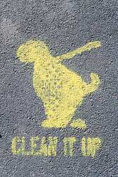 Clean It Up sign sprayed onto road