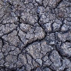 """""""Lagoa seca (Paisagem) fotografado em Linhares, Espírito Santo -  Sudeste do Brasil. Bioma Mata Atlântica. Registro feito em 2016.<br /> <br /> <br /> <br /> ENGLISH: Dry lagoon photographed  in Linhares, Espírito Santo - Southeast of Brazil. Atlantic Forest Biome. Picture made in 2016."""""""