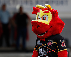 Dragons Mascot Rodney during the pre match warm up<br /> <br /> Photographer Simon King/Replay Images<br /> <br /> Guinness PRO14 Round 1 - Dragons v Benetton Treviso - Saturday 1st September 2018 - Rodney Parade - Newport<br /> <br /> World Copyright © Replay Images . All rights reserved. info@replayimages.co.uk - http://replayimages.co.uk