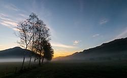 THEMENBILD - Sonnenaufgang bei einer Birken Baum Reihe im Nebel, aufgenommen am 11. Mai 2017, Kaprun, Österreich // Sunrise at a birch tree row in the fog at Kaprun, Austria on 2017/05/11. EXPA Pictures © 2017, PhotoCredit: EXPA/ JFK