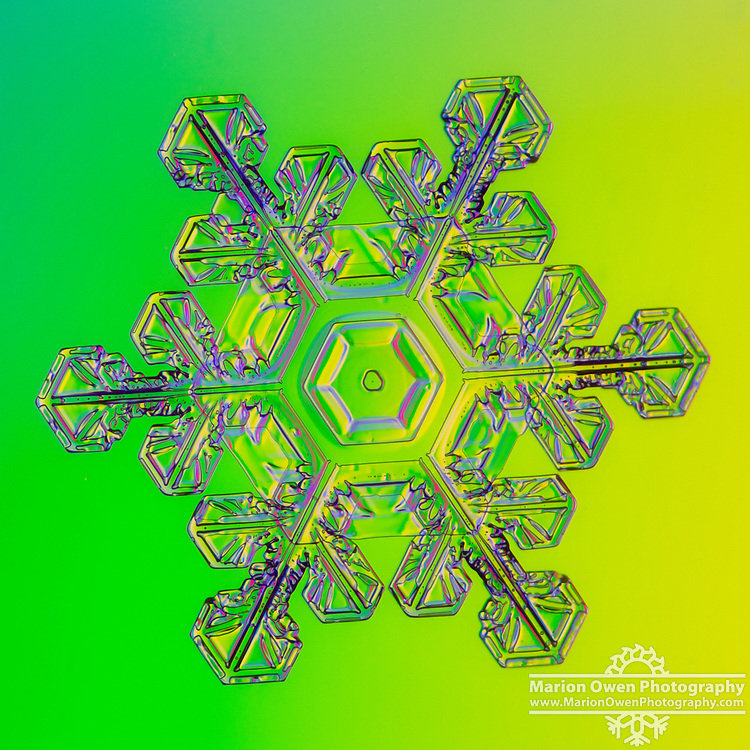 It ain't easy being green... the effect was created with colored gels taped over my flashlight. This is a real snowflake photographed in Anchorage, Alaska