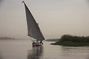 A scene of a distant felucca sailing boat on the River Nile at Luxor, Nile Valley, Egypt. Feluccas are ancient Egyptian sail boats which were used in ancient times as a primary mode of transport and are the only type of boat that is still used extensively in the country. Plying this great African river is a cheap fare state-run ferry used by commuters and locals but these sailing boats serve tourists and therefore are the many victims of the tourism downturn. According to the country's Ministry of Tourism, European visitors to Egypt is down by up to 80% in 2016 from the suspension of flights after the downing of the Russian airliner in Oct 2015. Euro-tourism accounts for 27% of the total flow and in total, tourism accounts for 11.3% of Egypt's GDP.