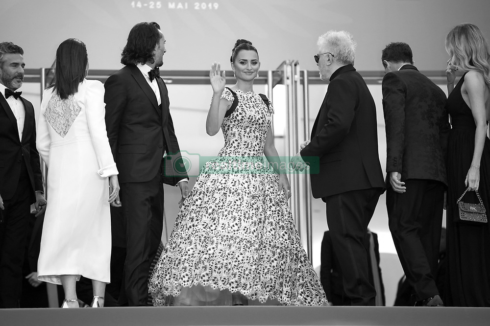 Leonardo Sbaraglia, Nora Navas, Pedro Almodovar, Penelope Cruz, wearing Atelier Swarovski Fine Jewelry, Antonio Banderas and Asier Etxeandia arriving on the red carpet of 'Pain And Glory (Dolor Y Gloria / Douleur Et Glorie)' screening held at the Palais Des Festivals in Cannes, France on May 17, 2019 as part of the 72th Cannes Film Festival. Photo by Nicolas Genin/ABACAPRESS.COM
