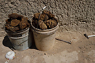 Dry cattle dung, collected in a plastic bucket by Mongolian herdsmen, to use as firewood, Inner Mongolia, China. This is the main source of heat during the winter in these open grassland steppes.