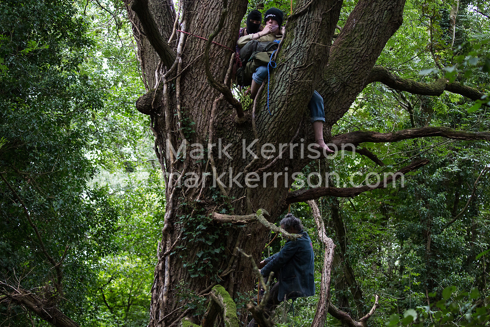 Denham, UK. 7th September, 2020. HS2 Rebellion tree protectors climb a mature oak tree in Denham Country Park in order to try to prevent its felling as part of works for the HS2 high-speed rail link. Anti-HS2 activists continue to try to prevent or delay works on the controversial £106bn project for which the construction phase was announced on 4th September from a series of protection camps based along the route of the line between London and Birmingham.