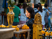 19 AUGUST 2015 - BANGKOK, THAILAND:  A woman leaves an offering of a flower garland during the reopening of the Erawan Shrine. Erawan Shrine in Bangkok reopened Wednesday morning after more than 20 people were killed and more than 100 injured in a bombing at the shrine Monday, August 17, 2015. The shrine is a popular tourist attraction in the center of Bangkok's high end shopping district and is an important religious site for Thais. No one has claimed responsibility for the bombing.     PHOTO BY JACK KURTZ