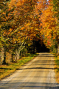 Image of a road in autumn near White River Junction, Vermont by Randy Wells