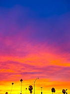 A brilliantly colorful sunset sky silhouettes palm trees and light posts at Hobie Beach in Miami, Florida. WATERMARKS WILL NOT APPEAR ON PRINTS OR LICENSED IMAGES.