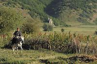 Albanian cowboy. Lake Prespa National Park, Albania June 2009
