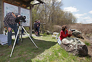 Mamakating, New York - People look through spotting scopes and telescopes at a Basha Kill Area Association Nature Watch program in the Bashakill Wildlife Management Area on April 30, 2011. The spotting scope, at left, was aimed at an osprey nest and the the telescope, in the background, was showing a bald eagle on its nest.
