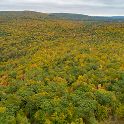 Drone view of  forest between Mount Eleanor  and Birch Ridge in New Durham, New Hampshire.