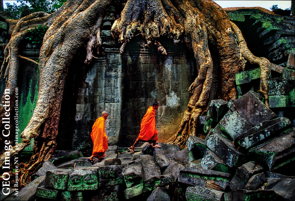 Buddhist monks clim among the ruins of the ancient Ta  Prohm temple, now strangled by the jungle, near Siem Reap, Cambodia.  Built in 1186 during the Golden Age of the Khmer Empireandnforgotten for centuries, Ta Prohm has been left as it was rediscovered, swathed by giant fig and silk-cotton trees that extract water from the porous sandstone.