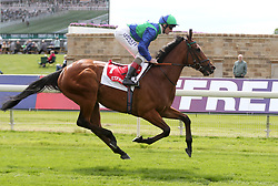 Turret Rocks ridden by Kevin Manning goes to post