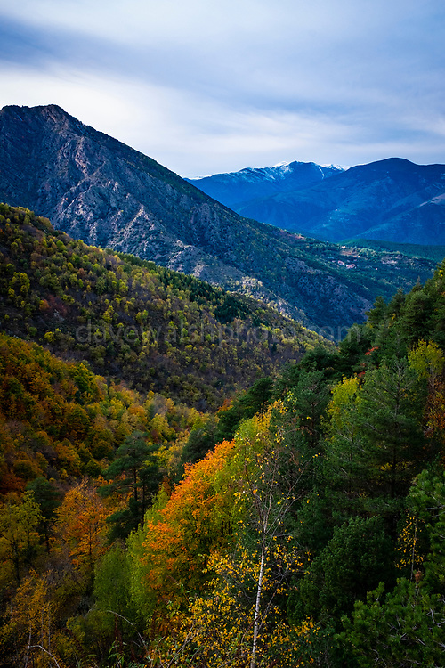 Autumn colours in the French, Pyrenees, near Casteil, Pyrenees Orientales, France.