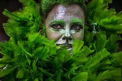 May 27, 2019 - Sao Paulo, Brazil: Grupo makes artistic intervention celebrating the Atlantic Forest Day on the steps of the Municipal Theater in Sao Paulo. (Credit Image: © Cris Faga/ZUMA Wire)