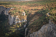 Rocky canyon with forest on top high angle view, Gorges du Verdon, Verdon Natural Regional Park, France