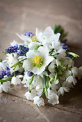 Hand tied bunch of spring flowers. Christmas rose (Helleborus niger), Grape hyacinths (Muscari), Summer snowflake (Leucojum aestivum 'Gravetye Giant')