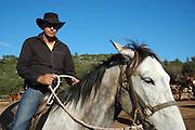 Israel, Carmel Mountain, Carmel National Park, Horseback riding