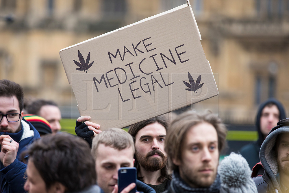© Licensed to London News Pictures. 23/02/2018. London, UK. A man holds a sign with cannabis leaves on it which reads 'Make Medicine Legal' at a protest opposite Parliament in support of the legalisation of cannabis for medicinal use while MPs debate the issue in The House of Commons. Photo credit: Rob Pinney/LNP
