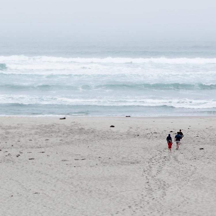 Pacific Coast, Seascape No.15