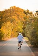 Cyclist on the Island of Sant'Erasmo. Venice, Italy, Europe