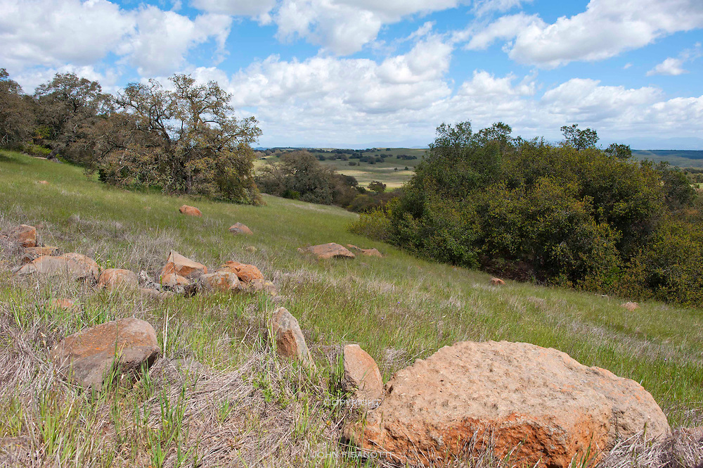 A beautiful spring day at the Santa Rosa Plateau Reserve