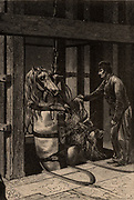 A pit pony being lowered down a mine shaft in the Creuzot coalfield, France.  From  'Underground Life; or, Mines and Miners' by Louis Simonin (London, 1869). Wood engraving.